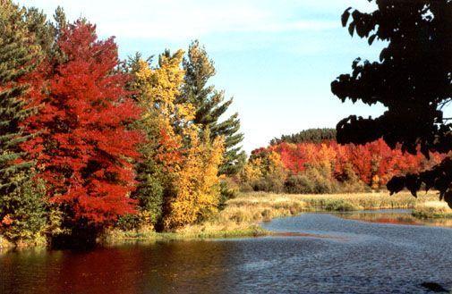 Belle image d'automne ... dans Belles images gmo1y5uj